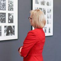 12-galeria